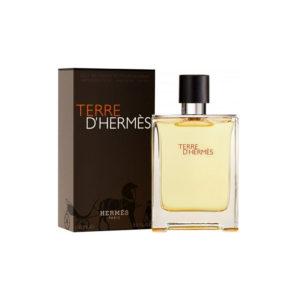 Τύπου Hermes Terre D' Hermes